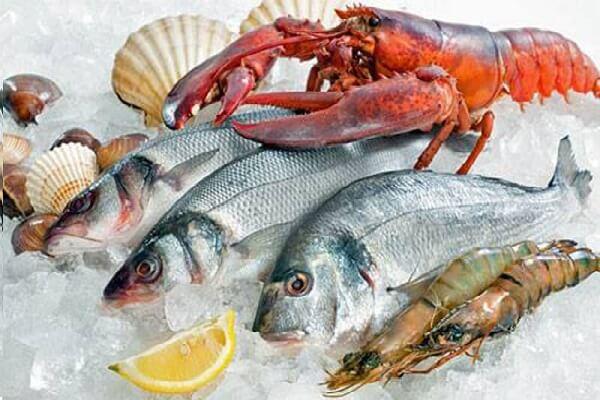 Cách bảo quản hải sản Tươi sống